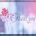 Thank You 1 by Terry Davis