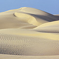 Thar Desert Dunes by Gloria & Richard Maschmeyer - Printscapes