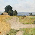 The Cornfield by Paul Guigou