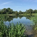 The Cotswold Water Park by Patrick Wise
