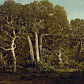 The Great Oaks Of Old Bas-breau by Theodore Rousseau