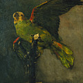 The Green Parrot by Vincent Van Gogh