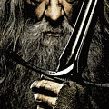 The Leader Of Mankind  - Gandalf / Ian Mckellen by Prar Kulasekara
