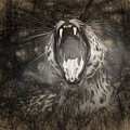 The Leopard's Tongue Rolling Roar IIi by Mary Lou Chmura