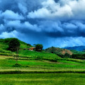 The Little House On The Prairie by Galeria Trompiz
