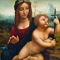 The Madonna Of The Yarnwinder by Leonardo Da Vinci