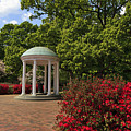 The Old Well At Chapel Hill by Jill Lang