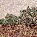 The Olive Pickers by Vincent van Gogh