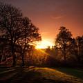 The Sunset by Angel Ciesniarska