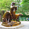 Three Bronze Sculpture Statue Of Bears Great Attraction At New York Ny Central Park By Navinjoshi by Navin Joshi