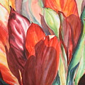 Ti Leaves by Ileana Carreno