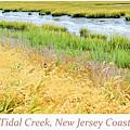 Tidal Creek Mud Flat At Low Tide by A Gurmankin