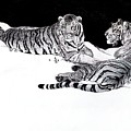 Tigers In The Snow by Hari Mohan