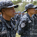 Tigres Commandos Stand In Formation by Stocktrek Images