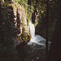 Toketee Falls by Chad Gray