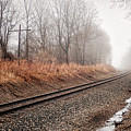Tracks In Morning Fog by Lars Lentz