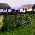 Traditional Cottages, Co Galway, Ireland by The Irish Image Collection