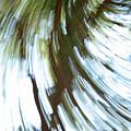 Tree Diptych 2 by Ric Bascobert
