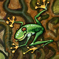 Tree Frog by Kevin Middleton