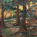 Trees by Artur Timoteo