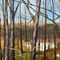Trees by Eleonora Hayes