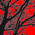 Trees I by Jim Beam