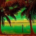 Tropic Nite by Florene Welebny