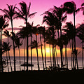 Tropical Sunset by Bill Schildge - Printscapes