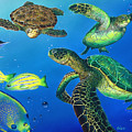 Turtle Towne by Angie Hamlin