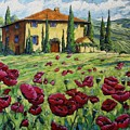 Tuscan Poppies by Richard T Pranke