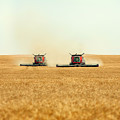 Twin Combines by Todd Klassy