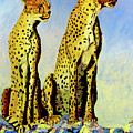Two Cheetahs by Stan Hamilton