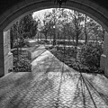 University Of Notre Dame Black And White 2 by John McGraw