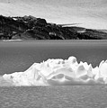 Upper Grinnell Lake With Icebergs Black And White by Bruce Gourley