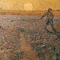 Van Gogh: Sower, 1888 by Granger
