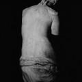 Venus De Milo by Greek School