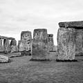View Of Circle Of Sarsen Trilithon Stones At Side Opposite The Avenue Stonehenge Wiltshire England U by Joe Fox