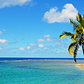 View Of Fiji by Himani - Printscapes