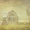 Vintage Barn by Ramona Murdock