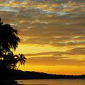 Viti Levu, Coral Coast by Himani - Printscapes