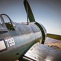 Vought F4u-5 Corsair  by Sandra Selle Rodriguez