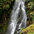 Waterfall At Azores by Juraj Simek