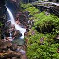 Waterfall  by Sebastian Musial