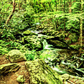 Waterfalls In The Smokies With Art by Kay Brewer