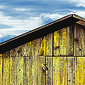 Weathered Wooden Barn, Gaviota, Santa by Panoramic Images
