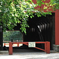 Wertz Red Covered Bridge by Michelle DiGuardi