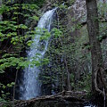 Westfield Falls by Catherine Gagne
