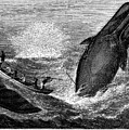 Whaling, 19th Century by Granger