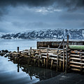 Wharf In Norris Point, Newfoundland by Mike Organ
