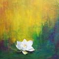 White Lotus by Joya Paul